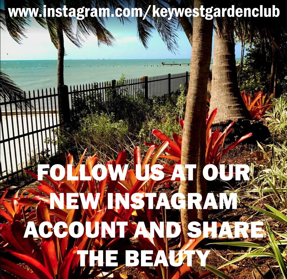 instagram.com/keywestgardenclub