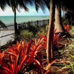 garden paradise by the sea